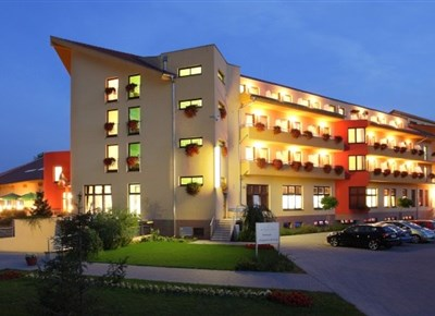 WELLNESS HOTEL PATINCE - Patince - hotel
