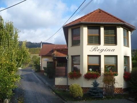 Penzion Regina - Ka�ava u Zl�na