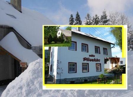 Apartmány a Villa Plischke