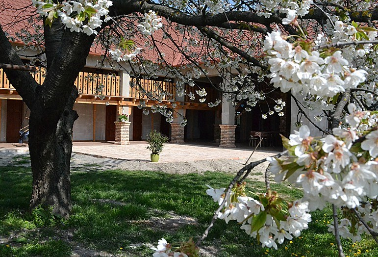 Villa Filia - Veľký Mader-Okoč