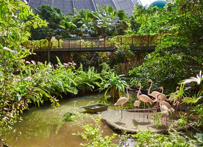 TROPICAL ISLANDS - Krausnick-Gross Wasserburg