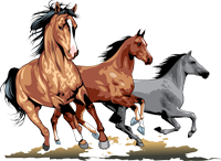 Dovolená u koní